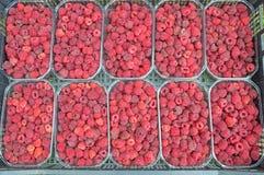 Organicznie Podnosić owoc malinki w koszu połówka a Obrazy Royalty Free