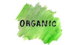 Organicznie pojęcie na akwareli zieleni tle ilustracja wektor