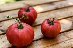 Organicznie pomidory na Drewnianym stole obraz stock