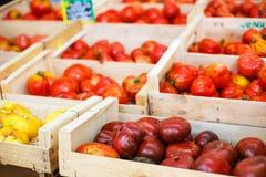 Organicznie pomidory od śródziemnomorskich rolników wprowadzać na rynek w Provence, Zdjęcie Stock