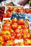 Organicznie pomidory od śródziemnomorskich rolników wprowadzać na rynek w Provence, Zdjęcie Royalty Free