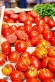 Organicznie pomidory od śródziemnomorskich rolników wprowadzać na rynek w Provence, Obraz Royalty Free