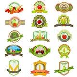 Organicznie produkt rolniczy etykietka i etykietka Obraz Royalty Free