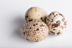 Organicznie przepiórek jajka Fotografia Stock