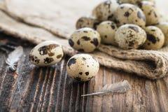 Organicznie przepiórek jajka obrazy stock