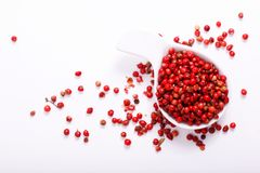 Organicznie Różowy Peppercorn w ceramicznej białej filiżance na bielu Obraz Stock