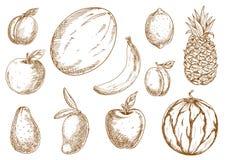 Organicznie r tropikalni, ogrodowi owoc nakreślenia, Zdjęcia Stock