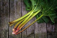 Organicznie rabarbarowi badyle z liśćmi na wieśniaku zalecają się, przeglądają od abov, Obraz Stock