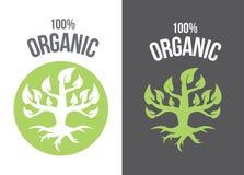 Organicznie rośliny †'zapasu ilustracyjnego †'zapas ilustracyjna kartoteka Zdjęcia Stock