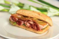 organicznie senadwich Fotografia Stock