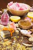 Organicznie skincare składniki Obraz Stock