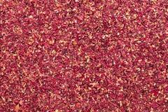 Organicznie suchego adamaszka różani płatki w dużym cięcie rozmiarze (Rosa damascena) Fotografia Royalty Free