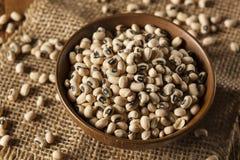 Organicznie Suchy Black Eyed Peas Zdjęcie Stock