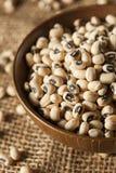 Organicznie Suchy Black Eyed Peas Zdjęcie Royalty Free