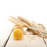 Organicznie Surowa włoska makaronu i durum banatka Fotografia Royalty Free