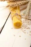 Organicznie Surowa włoska makaronu i durum banatka Obrazy Royalty Free