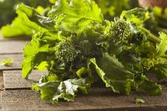 Organicznie Surowi Zieleni brokuły Rabe Rapini Zdjęcia Royalty Free