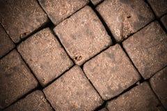 Organicznie surowy cacao deseniowej motyw tekstury odgórny widok - smakowici zdrowi cukierków sześciany - Zdjęcia Stock
