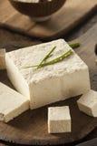 Organicznie Surowy soi Tofu Zdjęcia Royalty Free