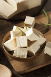 Organicznie Surowy soi Tofu Fotografia Stock