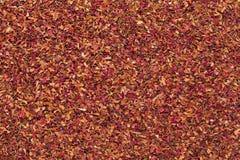 Organicznie susi różani płatki w dużym cięcie rozmiarze (Rosa Ã- centifolia) Fotografia Stock