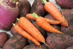 Organicznie Warzywa Zdjęcie Stock