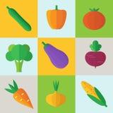 Organicznie warzywo ikony ilustracyjne Fotografia Royalty Free
