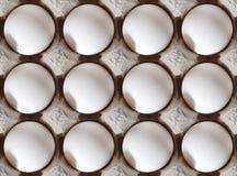 Organicznie świezi jajka Zdjęcie Stock