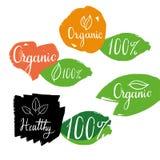 Organicznie zdrowe etykietki z kaligrafią i logowie na ręka rysujących liściach wektor Obraz Stock