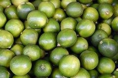 Organicznie zieleni wapno Zdjęcie Stock