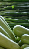 Organicznie Zielona wiosny cebula i Zucchinis Obrazy Stock