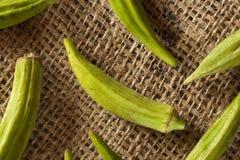 Organicznie Zielony Okra warzywo Obrazy Stock