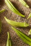 Organicznie Zielony Okra warzywo Zdjęcie Royalty Free