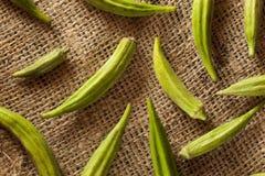Organicznie Zielony Okra warzywo Obraz Stock