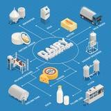 Organigrama isométrico del sector lechero ilustración del vector