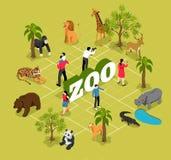 Organigramme isométrique de zoo illustration stock