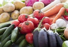 Organinc  vegetables Stock Images