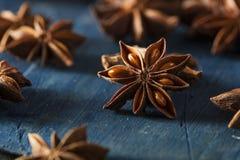 Organique séchez l'étoile de l'anis Photo stock