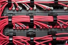 Organisateur de câble LAN Images libres de droits
