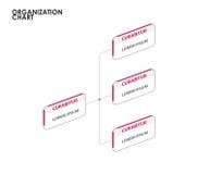 Organisationsübersicht infographics mit Baum Auch im corel abgehobenen Betrag Lizenzfreie Stockfotos