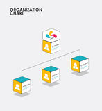 Organisationsübersicht infographics mit Baum, Diagrammfluß Vektor Stockbild