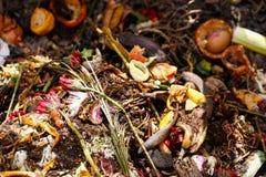 Organisch biologisch keukenafval royalty-vrije stock fotografie