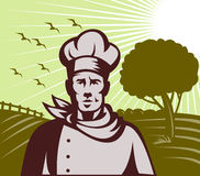 Organisch de chef-kok of de koklandbouwbedrijf van Baker vector illustratie