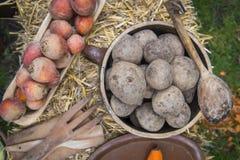 Organisch en Gezond voedsel royalty-vrije stock foto