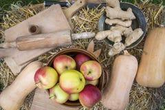 Organisch en Gezond voedsel royalty-vrije stock afbeelding