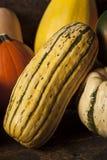 Organisch Geassorteerd Autumn Squash Stock Foto