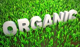 Organisch Gegroeid stock illustratie