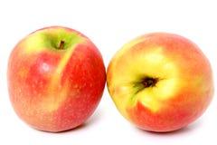 Organisch Gekweekt Roze Dame Apple Stock Afbeelding