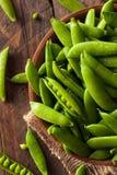 Organisch Groen Sugar Snap Peas Stock Afbeelding