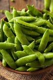 Organisch Groen Sugar Snap Peas Stock Foto